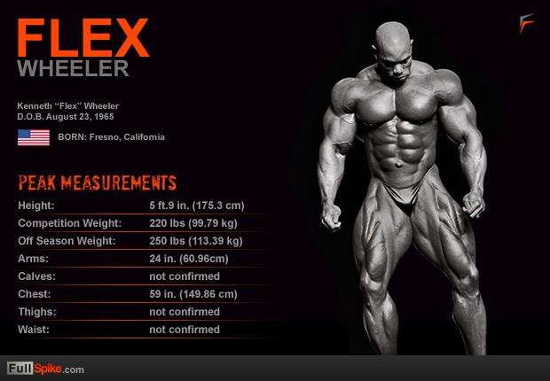 ronnie coleman measurements bodybuilders