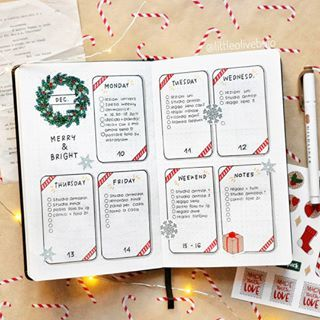 """Photo of Viola 