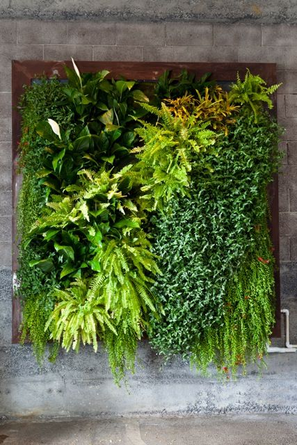 Artificial vertical garden green wall green walls Indoor living wall herb garden
