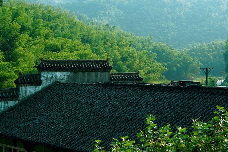 Choosing an ecotour ecotourism vacation city view