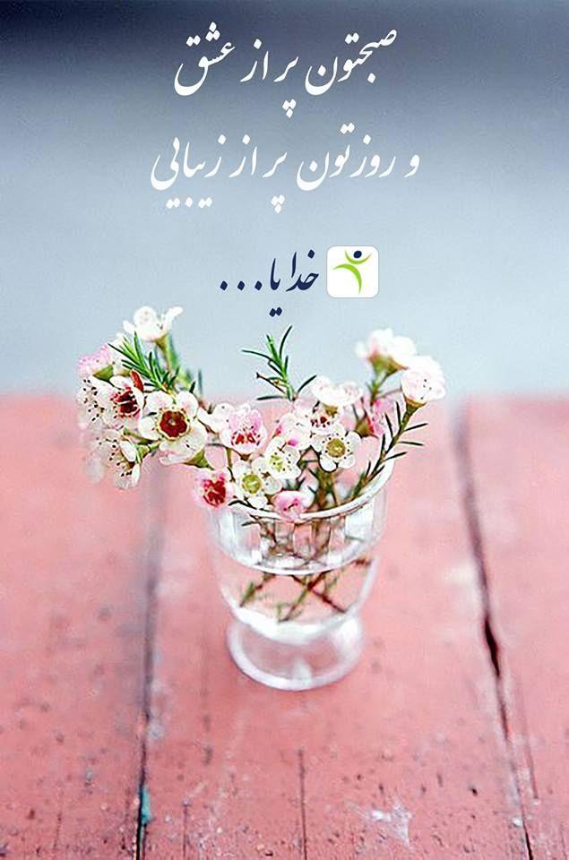 صبح بخیر ويكی فارما Wikipharma سلام بر همه ی خوبان صبحتون به شادی و روزتو Beautiful Flowers Pretty Flowers Wax Flowers