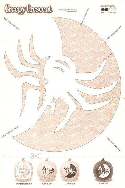 spider | Voor pompoenen | Pinterest | Kürbis, Gesicht und Herbst