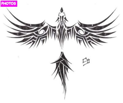 tribal phoenix tattoo things i like pinterest id e. Black Bedroom Furniture Sets. Home Design Ideas