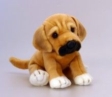 This Keel Toys Puggle Has Just Arrived At Luv Dogs He S A Pug