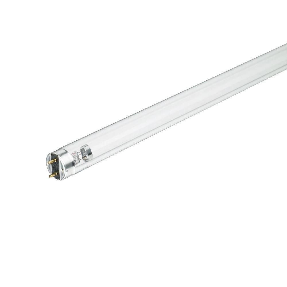 T8 high output fluorescent light bulbs httpjohncow t8 high output fluorescent light bulbs arubaitofo Image collections