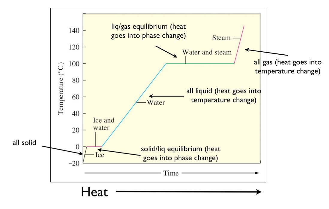 Heating Curves Biology Worksheet Quizzes And Answers Chemistry
