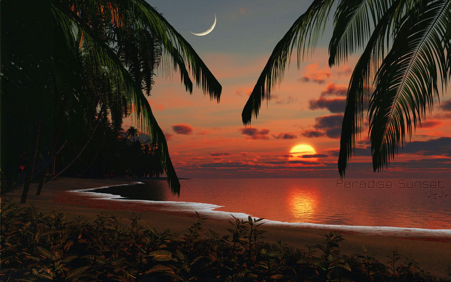 Tropical Beach Sunset Wallpapers With Best Decor And
