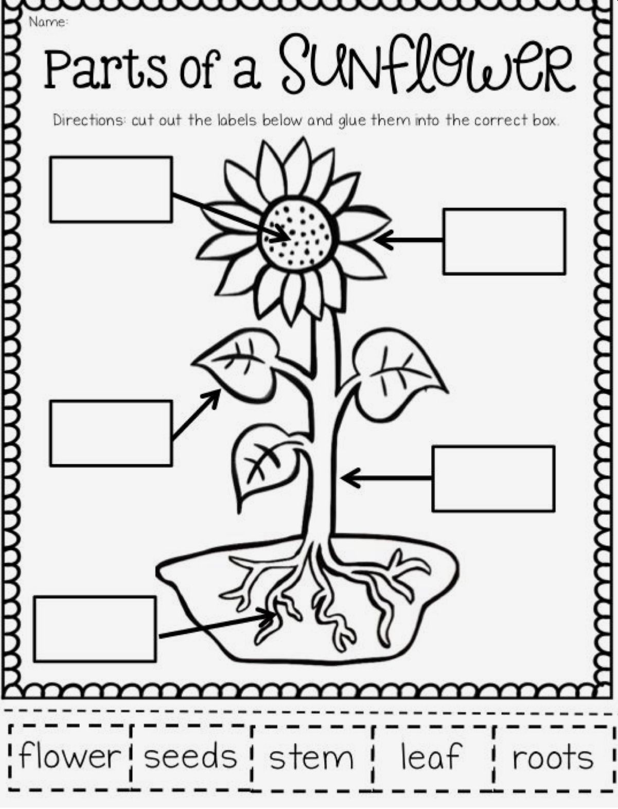 Pin by Melani Dennington on Kids Learning & Coloring Pages