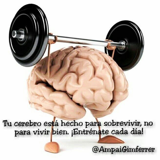 #Entrena tu #cerebro cada día para #vivirbien #coaching #reflexiones