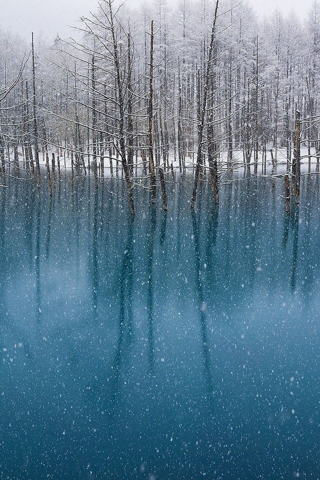 Image result for japanese art snow sky reflecting in a lake