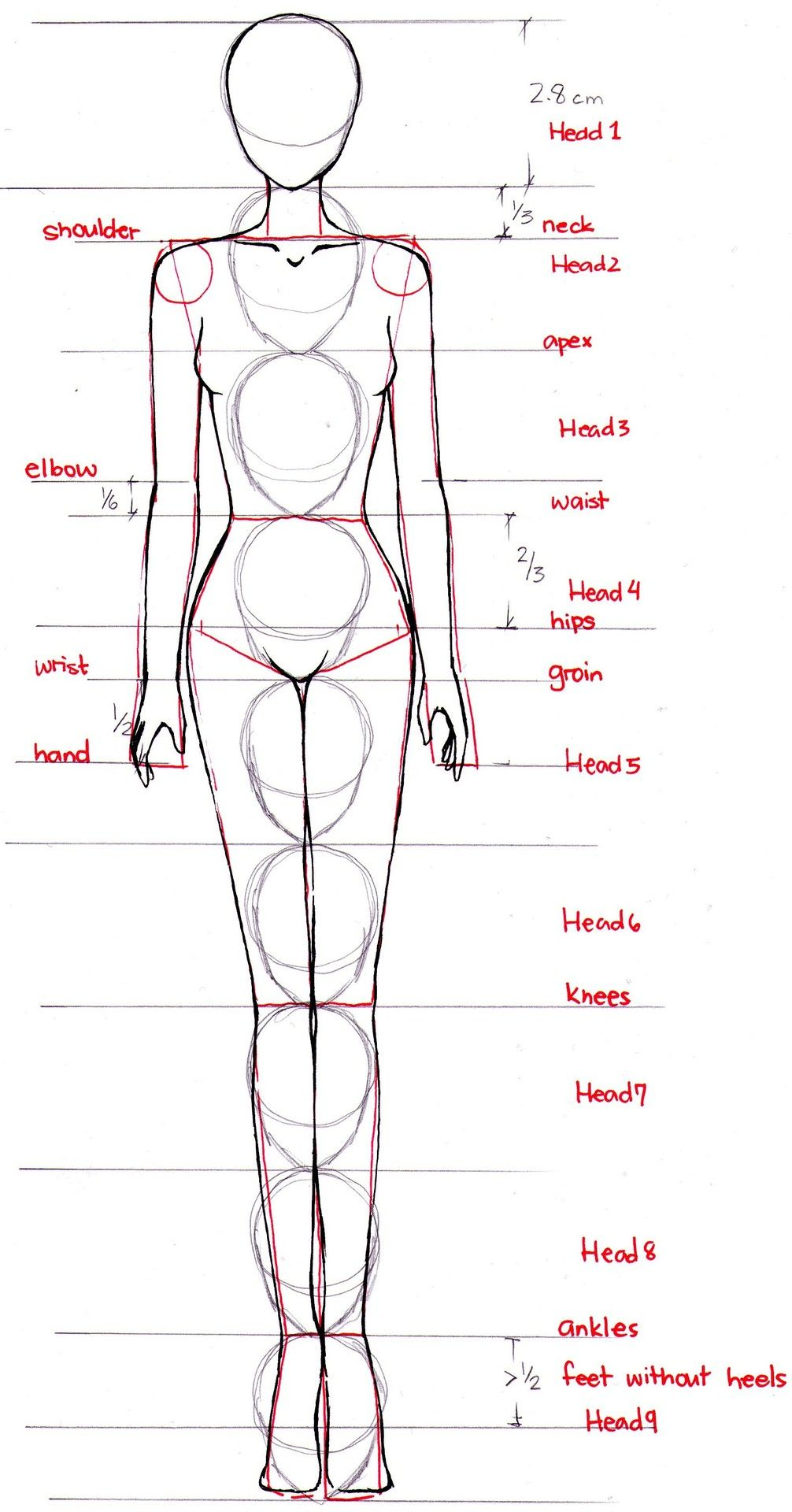 body proportions Эскизы pinterest drawing female body body