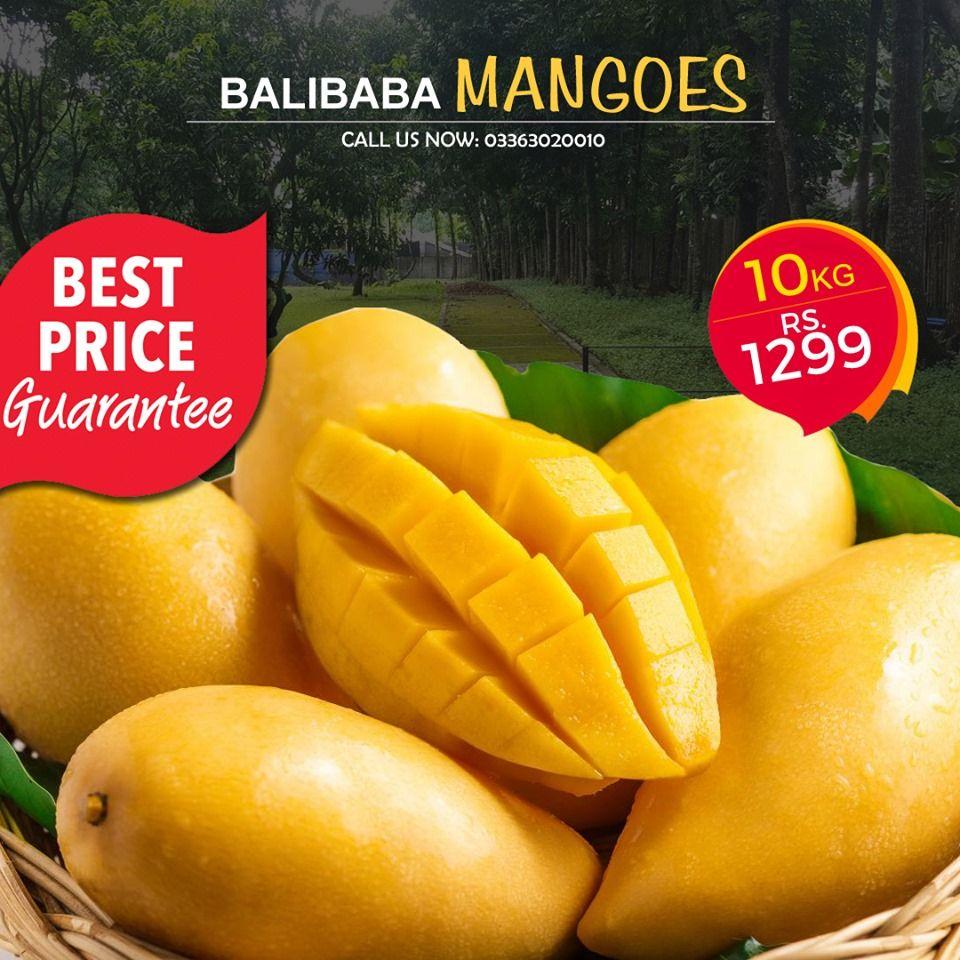 Balibaba Online Shopping Mango Online Shopping Stores Fashion Wordpress Theme
