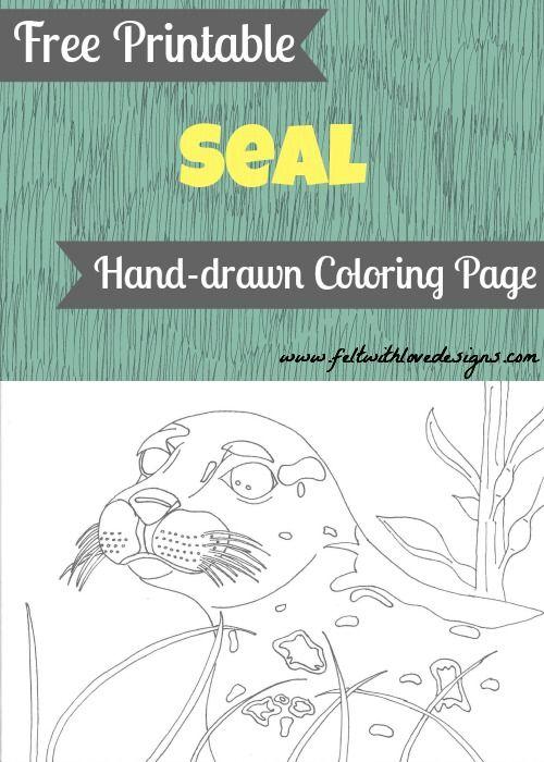 Free Printable Wild Animal Coloring Page - Seal