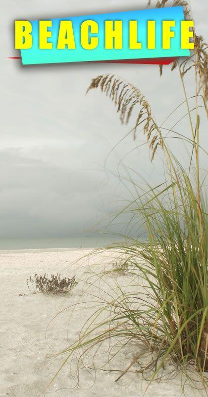 Beach Life in fabulous south Florida. http://www.waterfrontpropertiesadmiralscove.com/