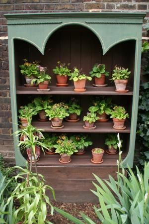 Plans For Building An Auricula Theatre Google Search