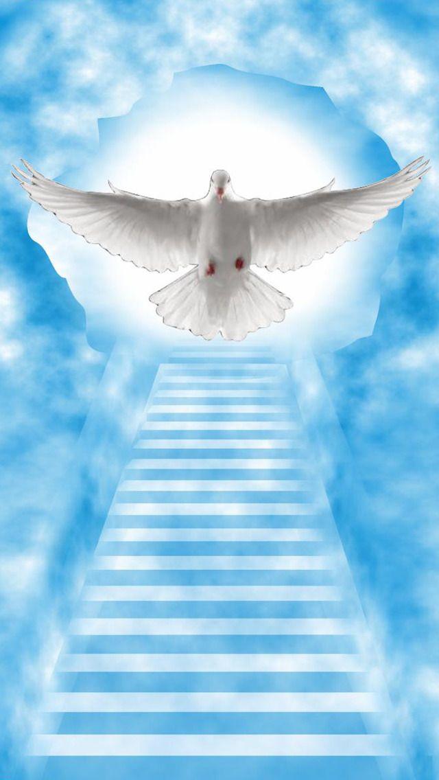 Heaven Image Backgrounds Wallpaper Heaven Wallpaper Stairway To Heaven Way To Heaven