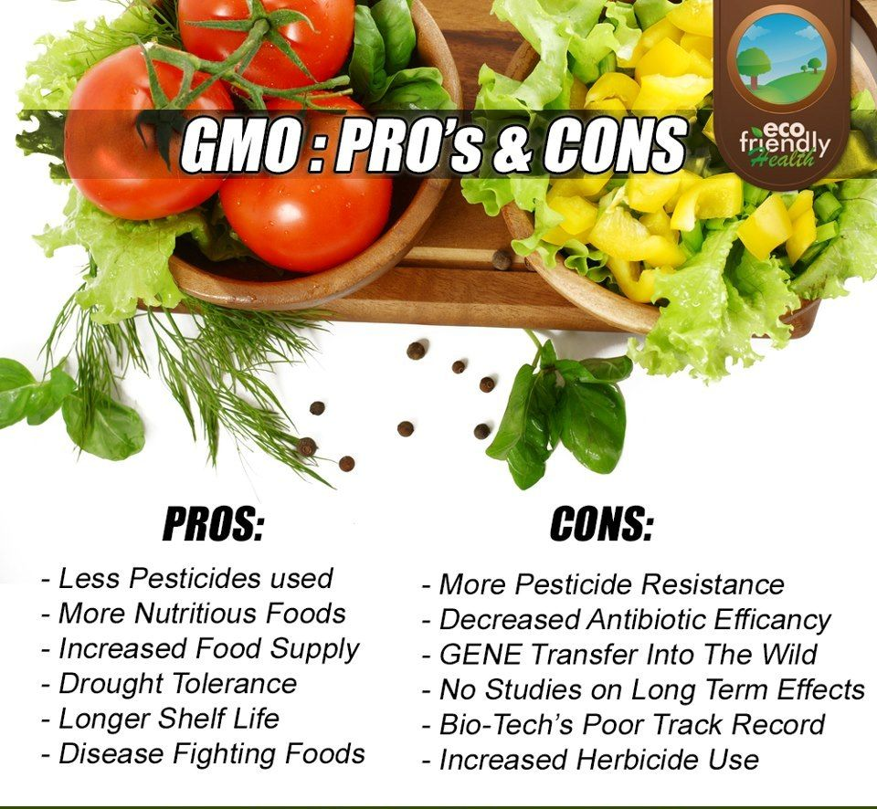 Gmos Pros  Cons  Gmos  Genetically Modified Food Biology  Gmos Pros  Cons