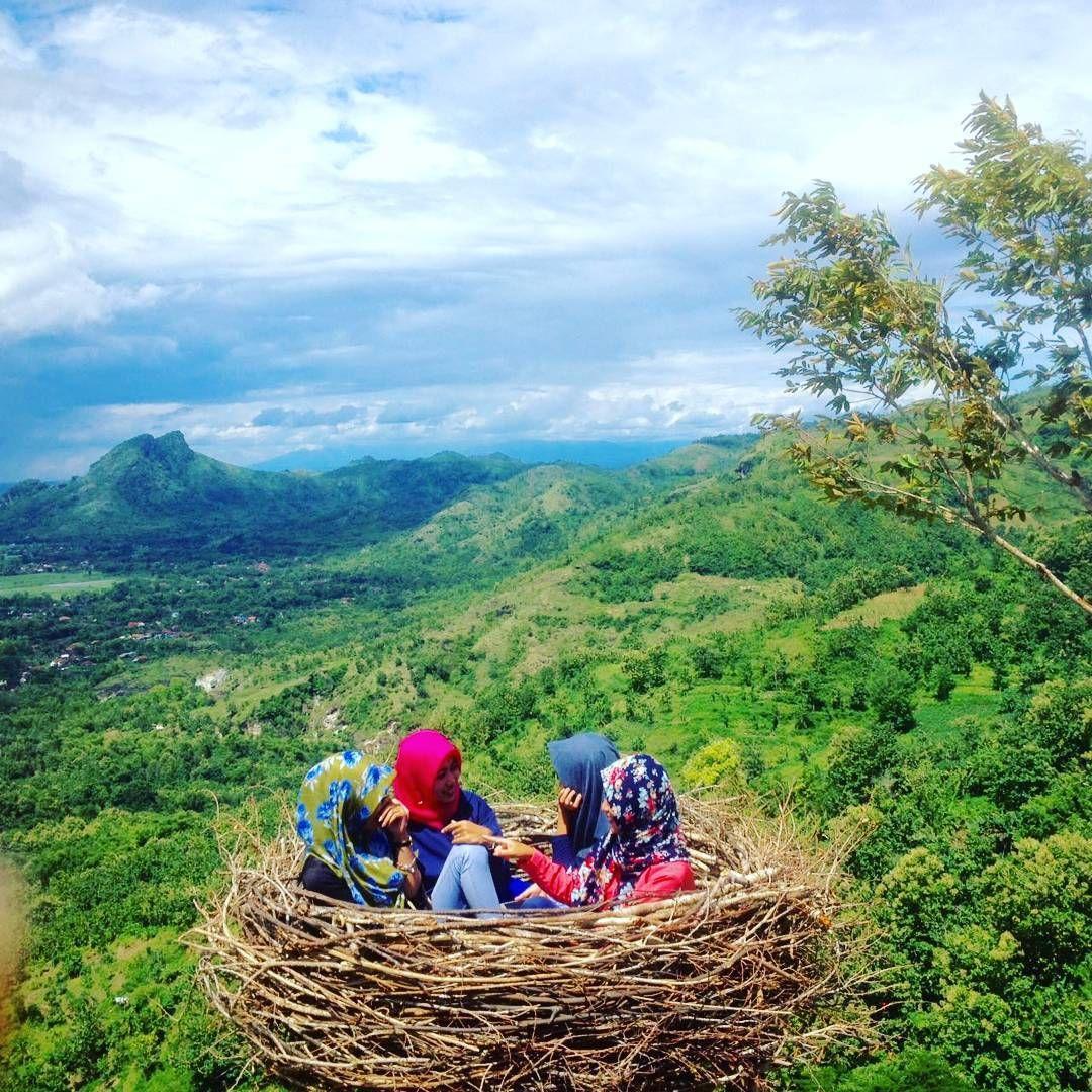 Bukit Jomblo Liburan Dengan Nuansa Alam Di Tulungagung Jawa Timur Liburan Alam Tempat