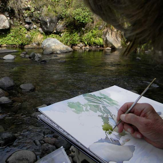 New Zealand river painting in progress.  Darn those sandflies.