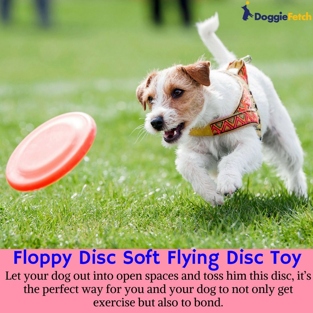 Cheap Dog Toys 5 Best Toys For Dogs Around 10 In 2017 Dog Toys