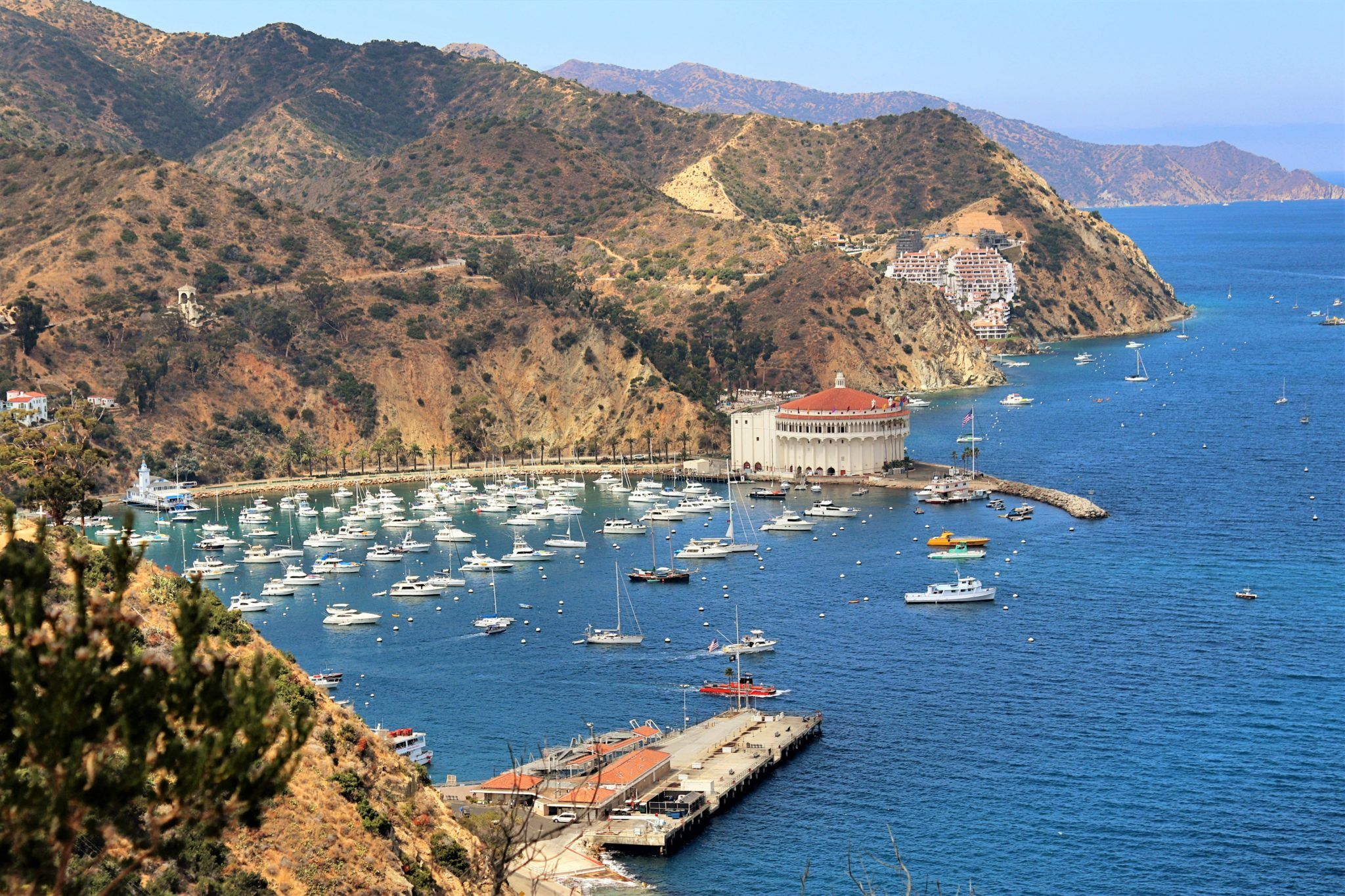 6 Things to do on Catalina Island Los