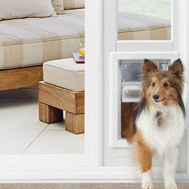 Pet or Dog Door | Solutions