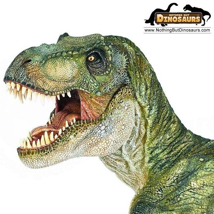 Tyrannosaurus rex T-rex Dinosaur Figure Model Toy Jurassic World Park