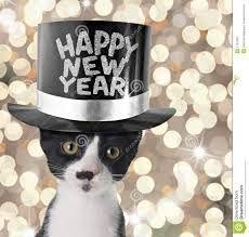 Resultado de imagem para Feliz ano novo