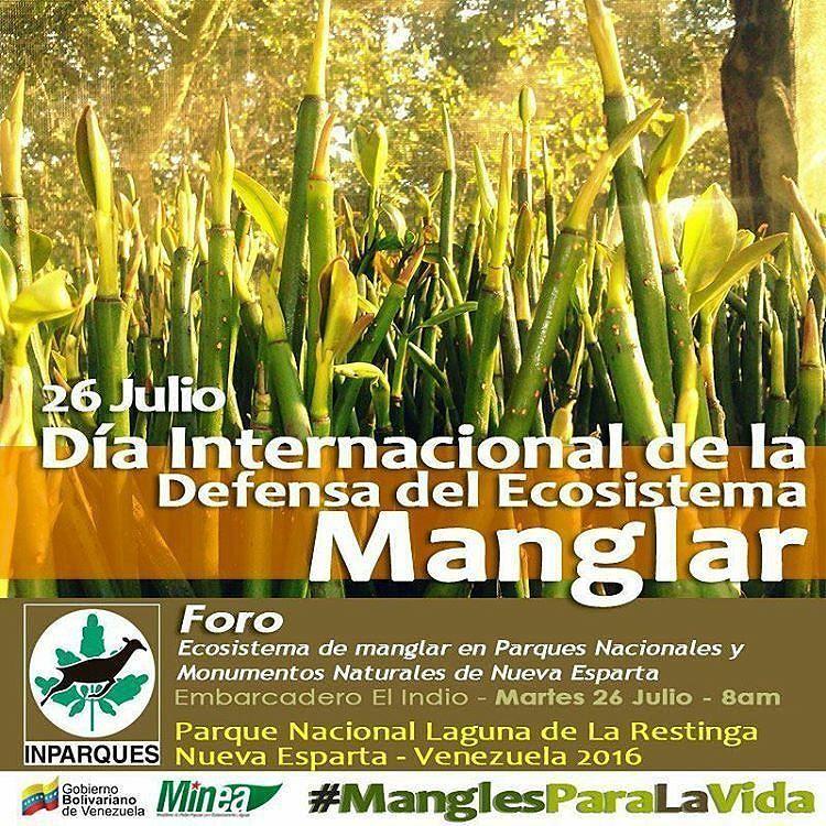 @Regrann from @inparquesne -  Hoy es Día Internacional de la Defensa del #Ecosistema #Manglar  #ManglesParaLaVida #EcoSocialismo  #Mangrove #MangroveDays #Venezuela #NationalParks #MangrovesForLife #Vida #Ecologia #Regrann