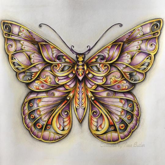 Nessyb25 07 11 2016 Johanna Basford Colouring Gallery Johanna Basford Coloring Magical Jungle Johanna Basford Johanna Basford Coloring Book