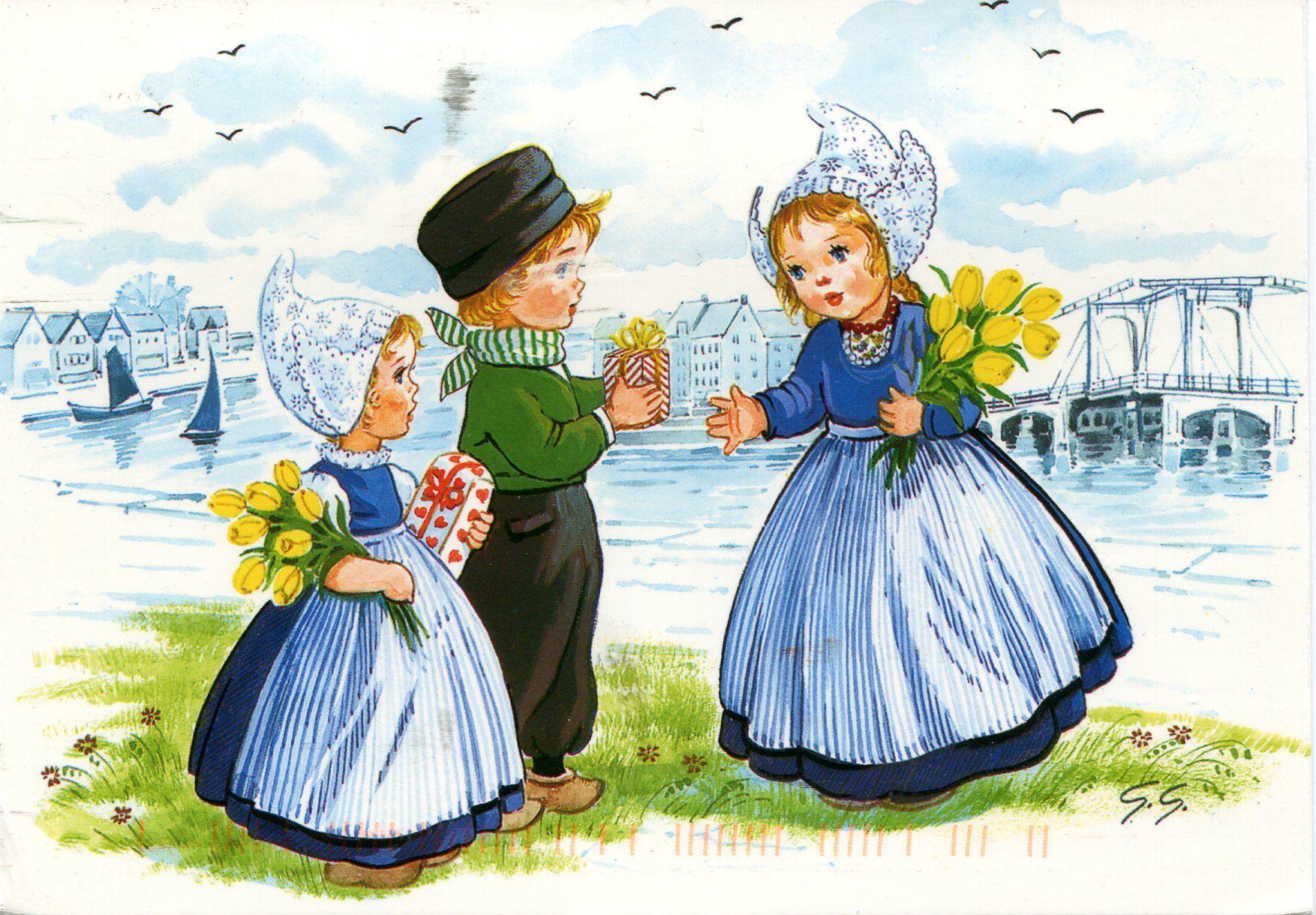 Цветы герберы, открытки голландии