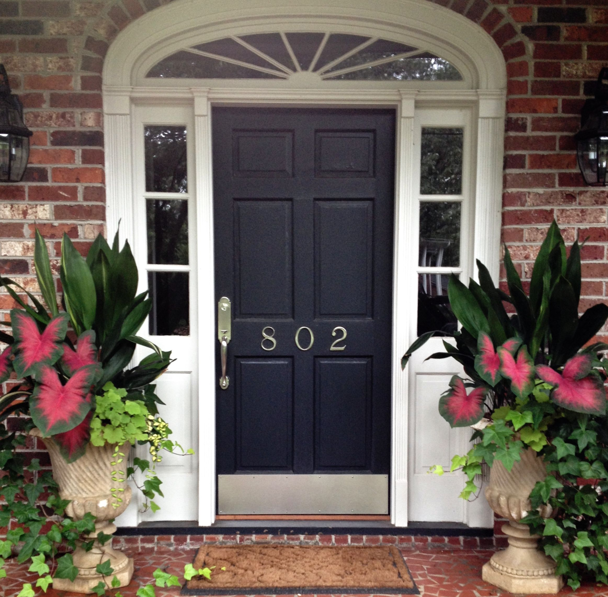 Front porch container gardening ideas - Shady Combo Cast Iron Plant Caladium Cora Bell English Ivy Perfect
