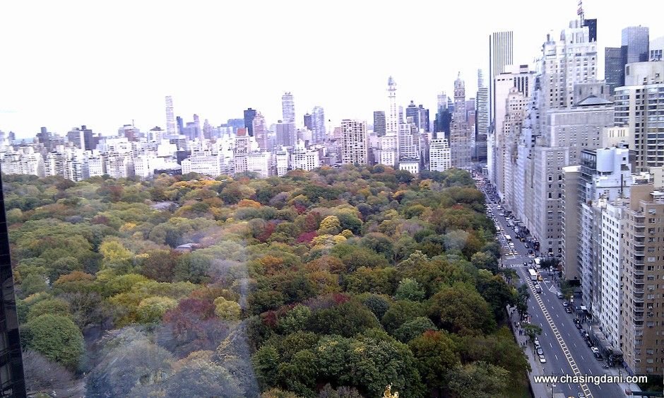 Central Park view from Asiate at Mandarin Oriental, New York {flowers on my plate}