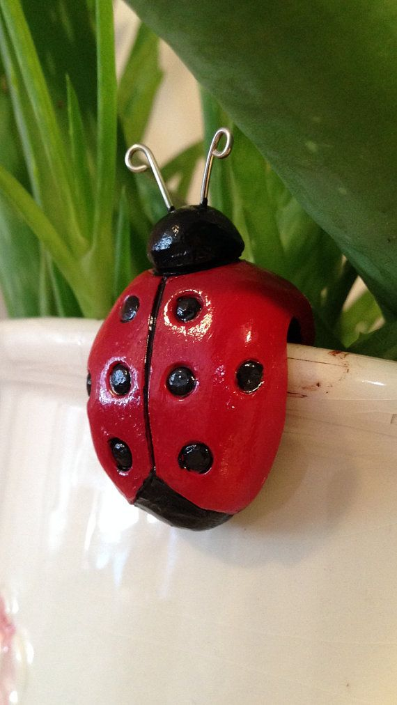 Flower Pot Lady Bug Lady Bug Decoration Plant Buddy