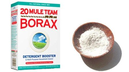 30+ Amazing Little Known Uses for Household Borax Guide