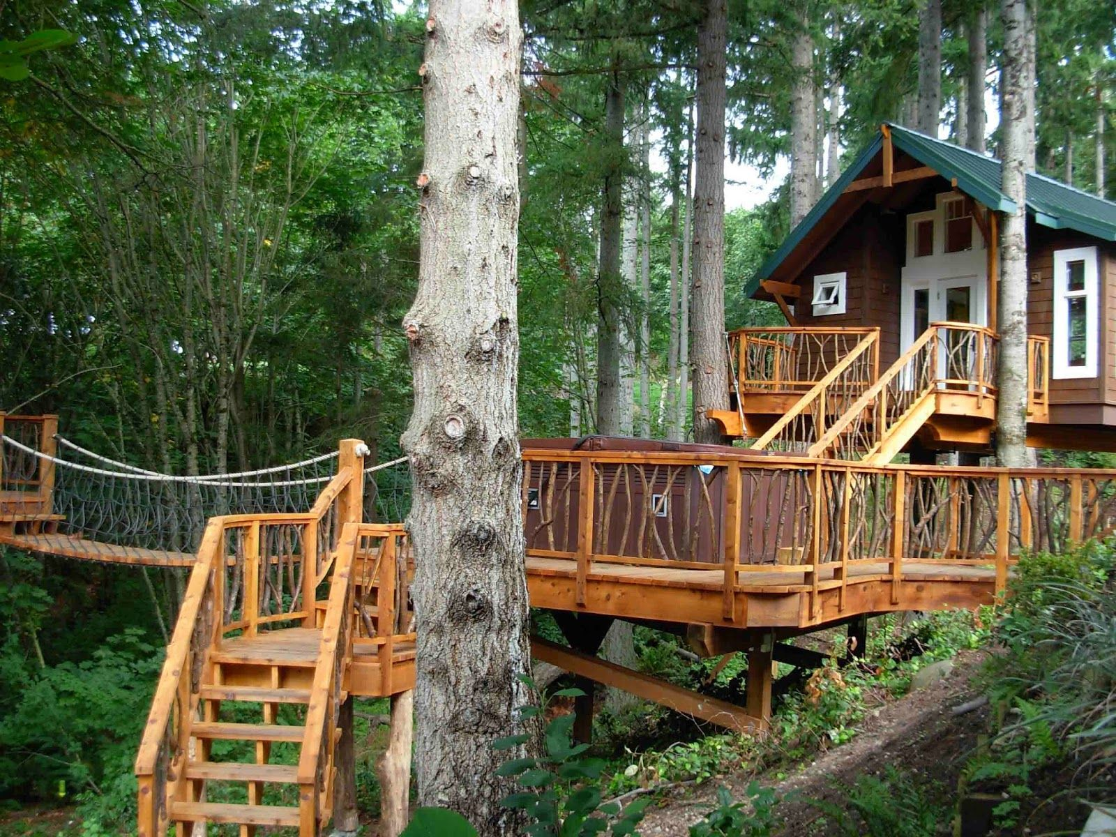 Furniture awesome about treehouse designs free with nice for Free treehouse plans
