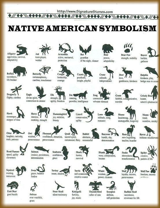 Native American Animal Symbols And Their Meanings Native American