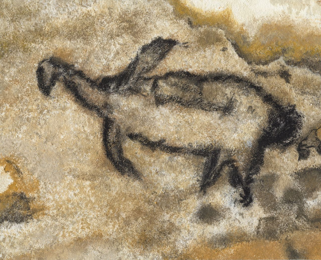 cave art lascaux cosquer cave Schematic of the modern sea level in the cosquer cave and its entrance tunnel   cave of altamira and paleolithic cave art of northern spain world heritage.