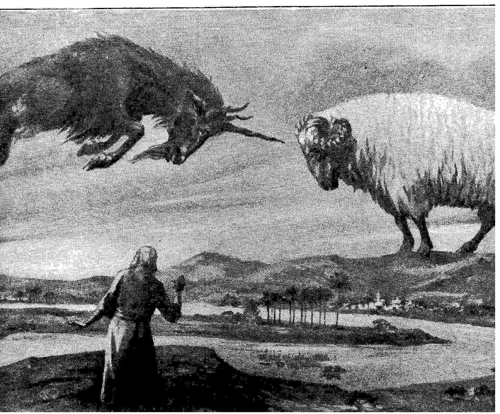 Daniel 8 ram goat google search the book of daniel pinterest daniel 8 ram goat google search buycottarizona