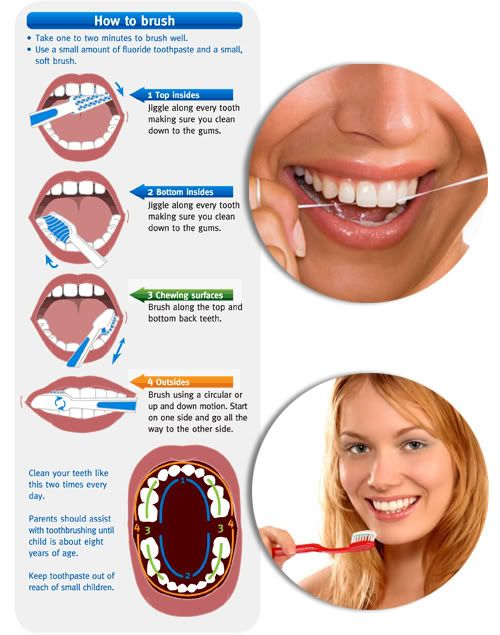How to brush your teeth Repinned by www.GreenbrierDental.com ...