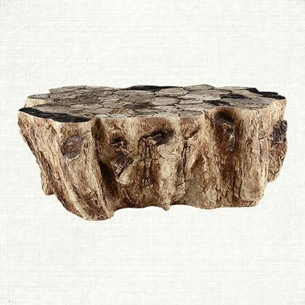 A Petrified Wood Coffee Table Pinners Are Loving The Look Of Clayhill Collection