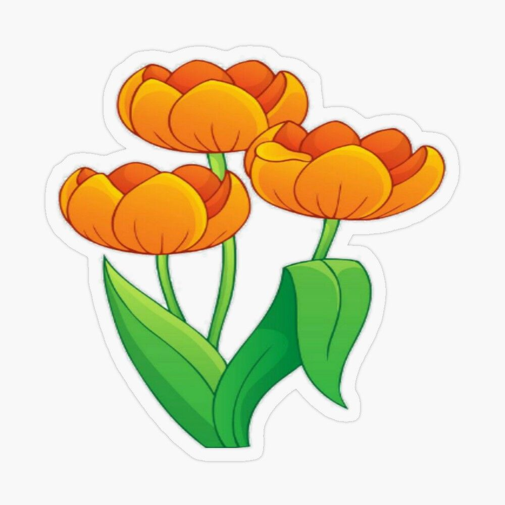 Pin On Gardens Flowers Decor