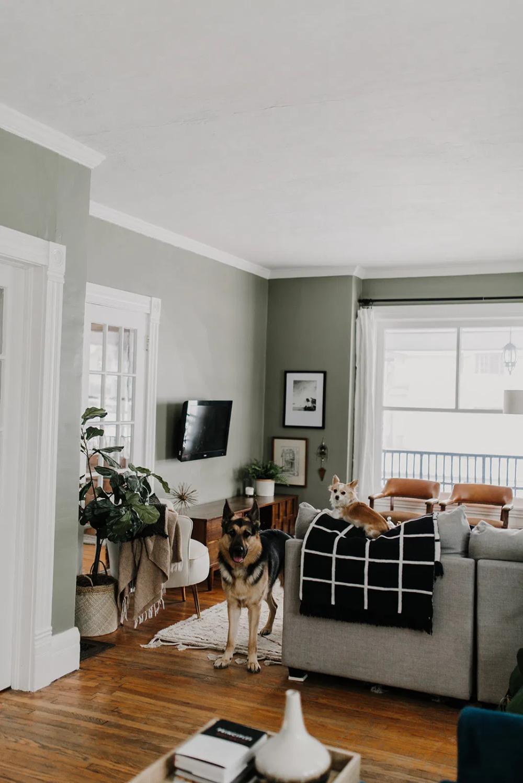 13 sage green living room furniture ideas