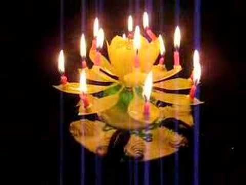 Lotus Candles are an awesome twist on plain old birthday cake