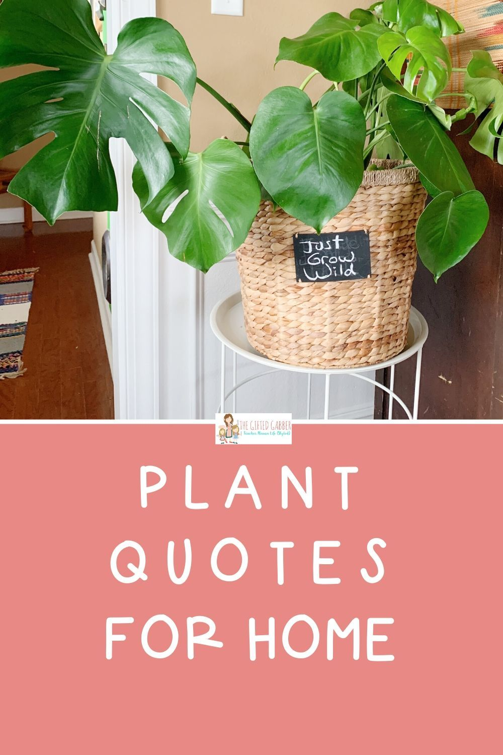 50 Funny Plant Quotes Funny Garden Quotes The Gifted Gabber Plants Quotes Garden Quotes Potted Houseplants