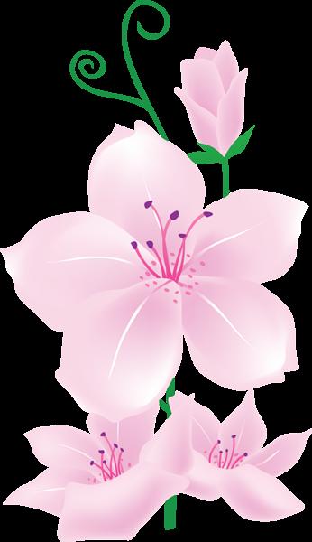 Light pink flowers clipart flowers pinterest flowers clip art light pink flowers clipart mightylinksfo