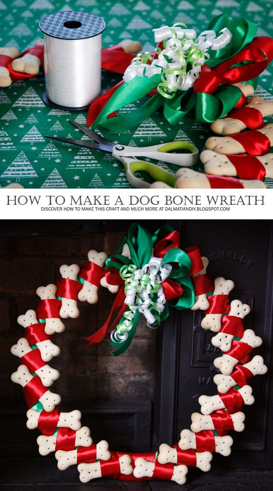 DIY Dog Treat Christmas (or Any Occasion) Wreath | Dog ...