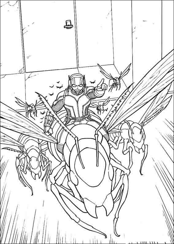 Dibujos para Colorear Ant-Man 11 | Dibujos para colorear para niños ...
