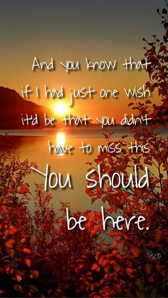 Cole Swindell ~ You Should Be Here | Country music quotes ...