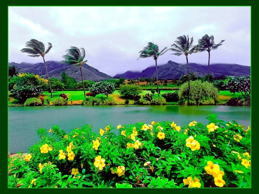 Maui Tropical Plantation, Hawaii